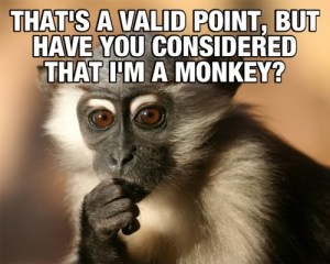 monkey thought