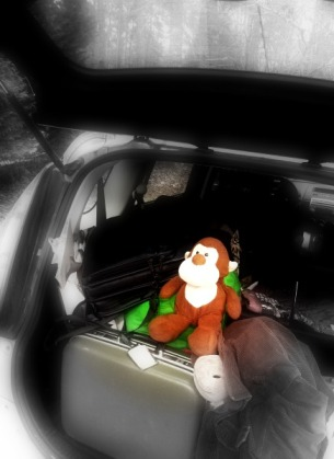 The stowaway monkey!