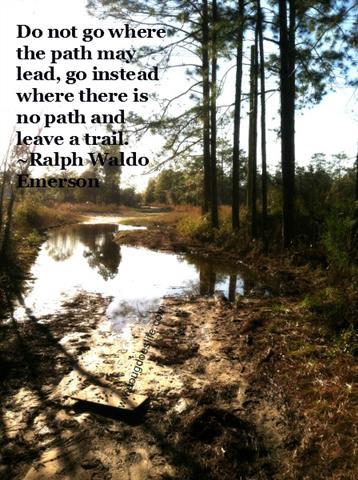 mud quote